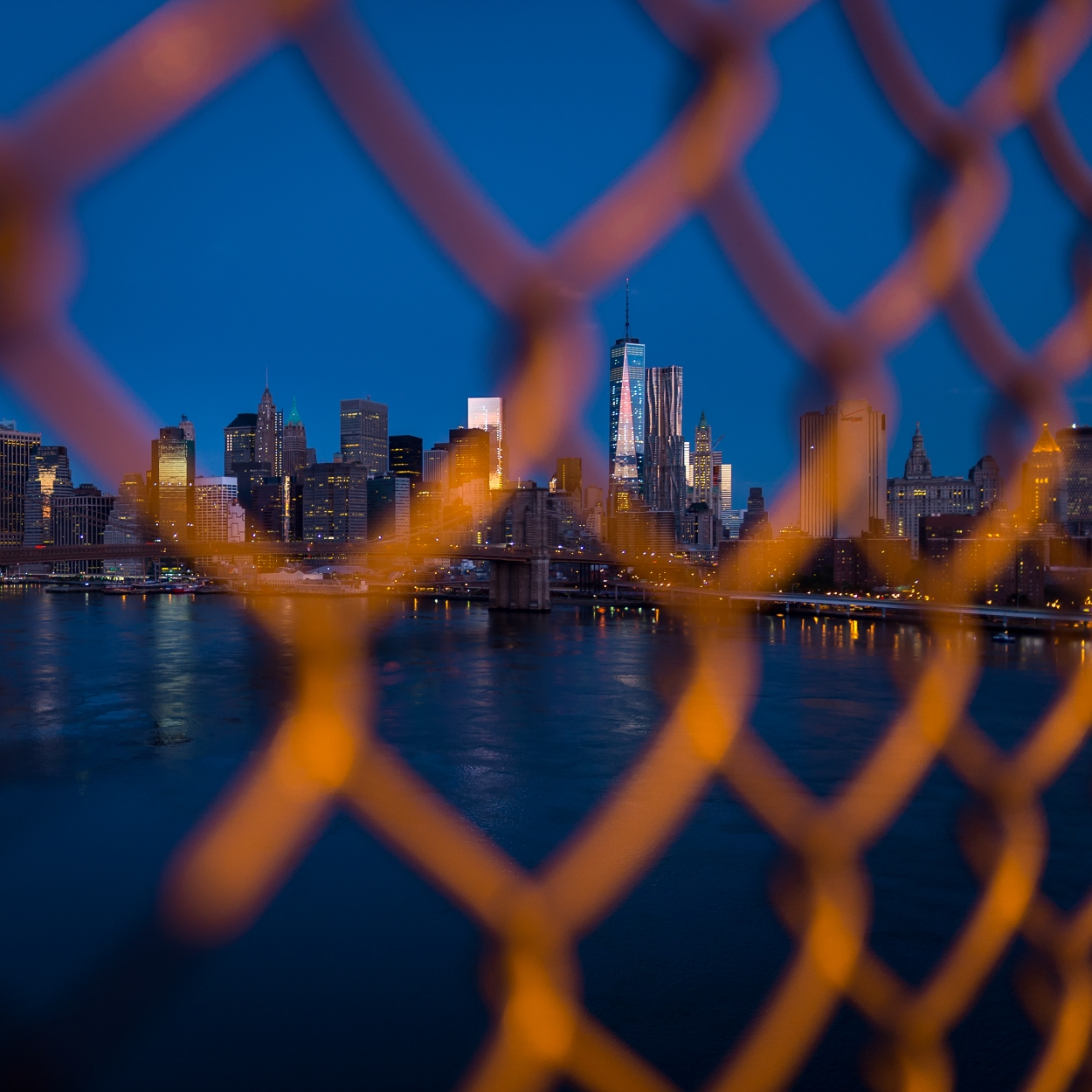 Through the fence
